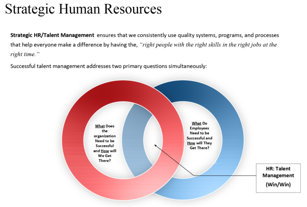 HR Talent Management model